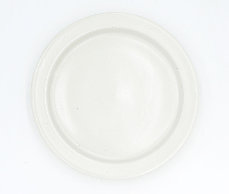 Ancient Pottery Plate L