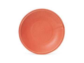 Orange SA005or