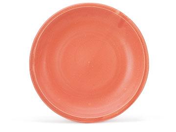 Orange SA006or